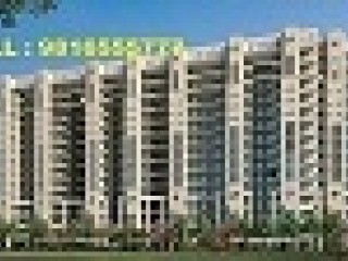 2/3/4 BHK ULTRA -LUXURY APARTMENT UBBER MEWS GATE IN MOHALI JUST STARTING FROM 36.90 LAKHS @ 9816555777