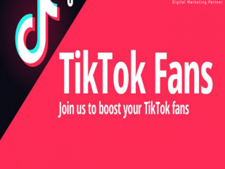 How To Get real and active Tiktok Followers in India